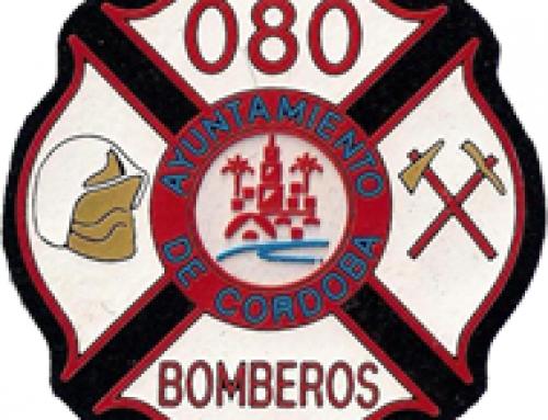 VISITA DE LOS BOMBEROS DEL AYUNTAMIENTO DE CÓRDOBA A NUESTRO III CAMPAMENTO PARA NIÑOS Y ADOLESCENTES CON DIABETES.